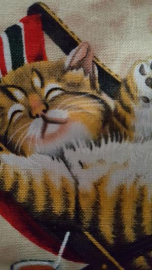 Sleephead Kitty