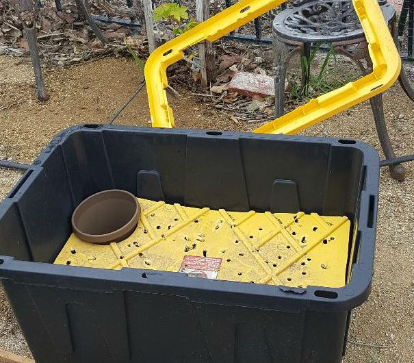 DIY Outdoors Oblong Self-Watering Planter