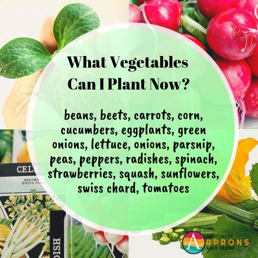 spring vegetable options